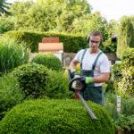 5 raisons d'embaucher un paysagiste professionnel