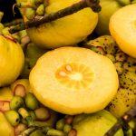 particularités du Garcinia cambogia